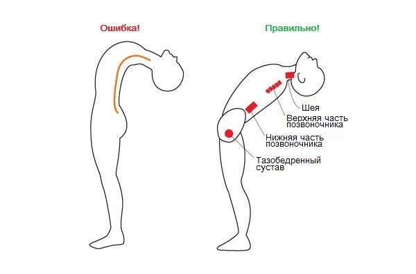 мышечная суставная гимнастика йоти