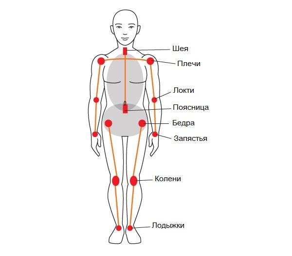 Суставы анатомия человека болит колено сбоку с внутренней стороны при ходьбе