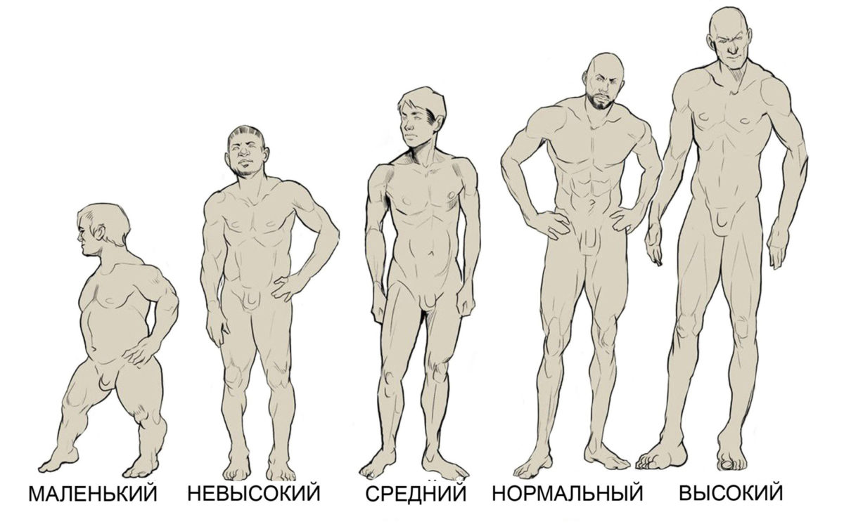 muzhchini-visokogo-rosta-seksualnee